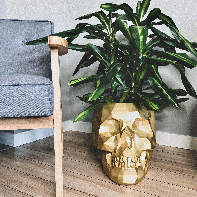 Doniczka czaszka XL aranżacja w domu