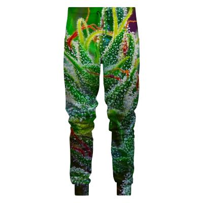 Spodnie GOOD WEED