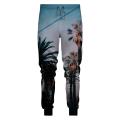 Spodnie LA