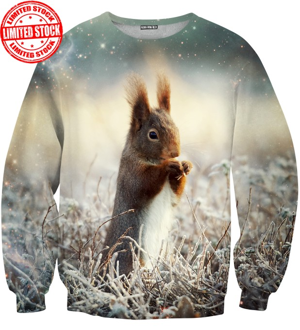 THE SQUIRREL SWEATER Thumbnail 1