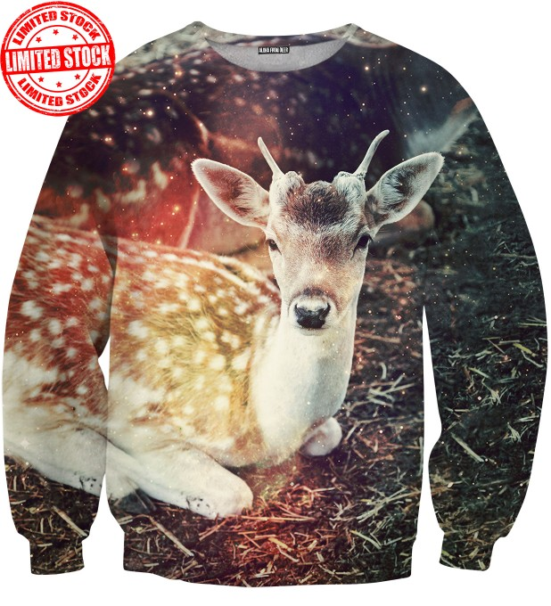 LITTLE DEER SWEATER Thumbnail 1
