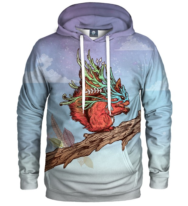 LITTLE ADVENTURER HOODIE Thumbnail 1