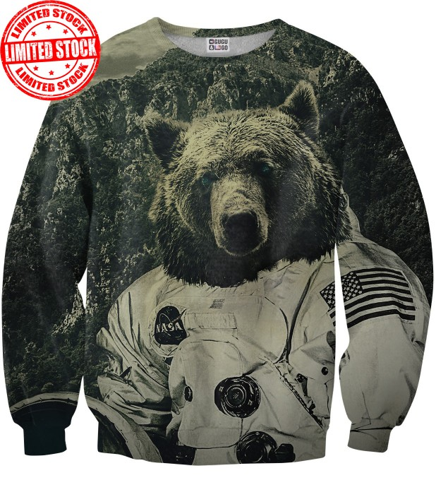 NASA bear sweater Miniatura 1
