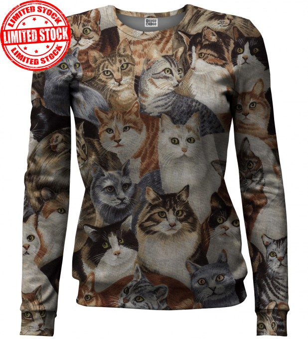 Cats sweater аватар 1
