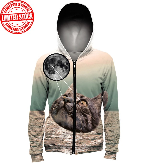 laser cat hoodie аватар 1