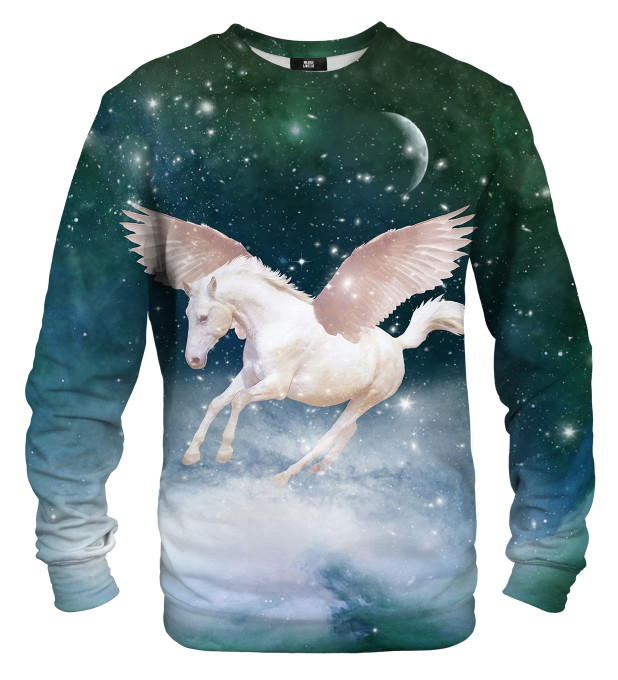 Pegasus sweater аватар 1