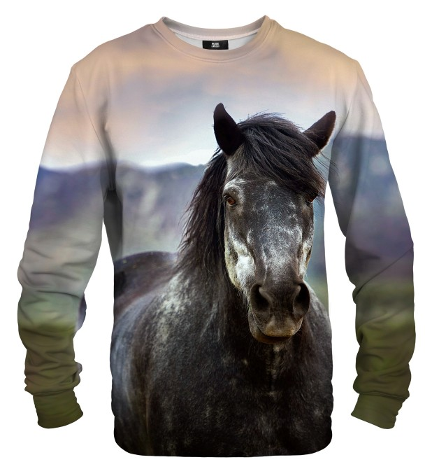 Horse sweater Miniature 1
