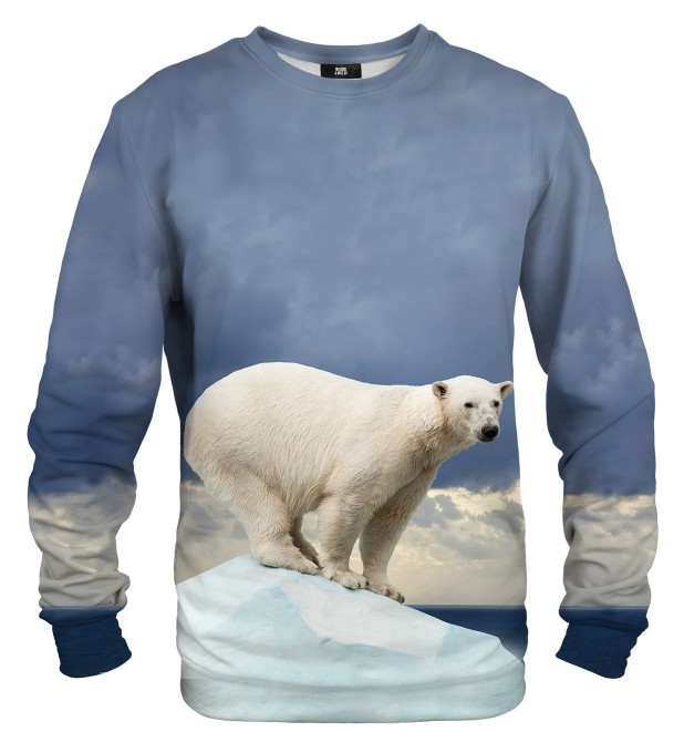 Bear sweater Miniatura 1