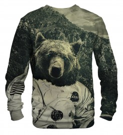 Mr. Gugu & Miss Go, NASA bear sweater аватар $i