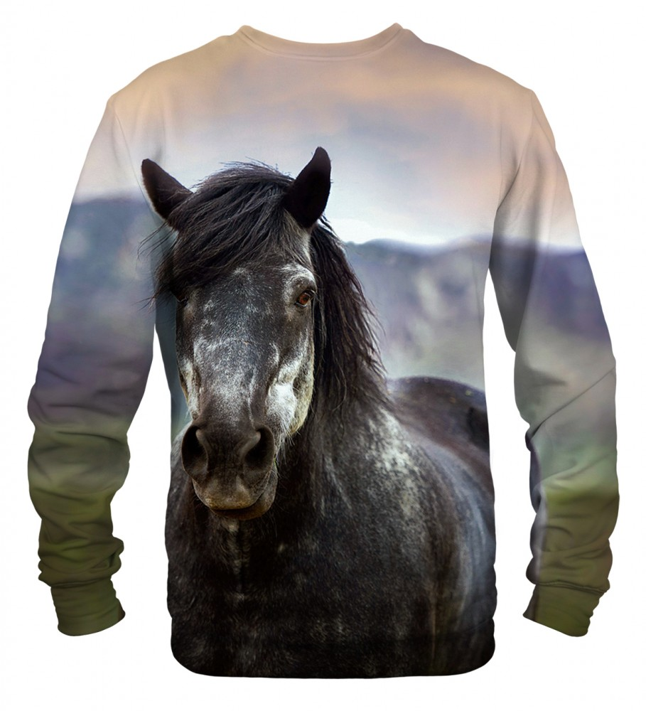 Mr. Gugu & Miss Go, Horse sweater Фотография $i