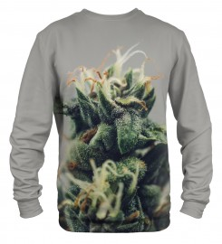 Mr. Gugu & Miss Go, ganja sweater Thumbnail $i