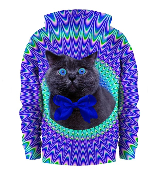 Crazy Cat Kids Hoodie Thumbnail 2